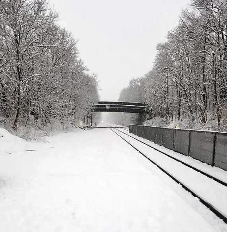363fbbe3319ebe3fedbb_snow_on_April_2.jpg