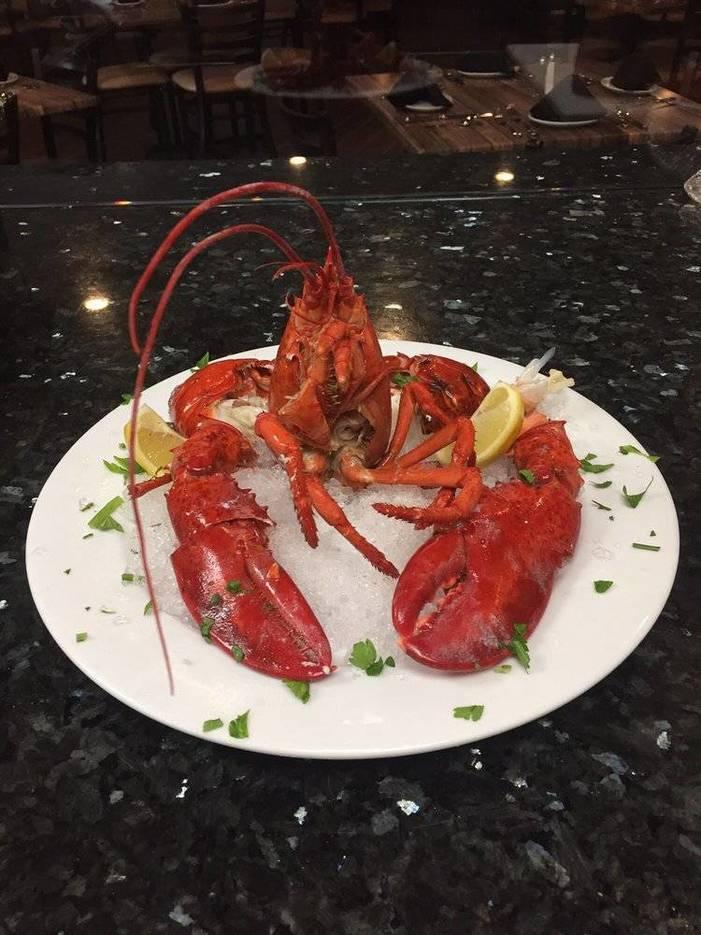 3921a0b9a281ddf7a9e5_lobster1.jpg