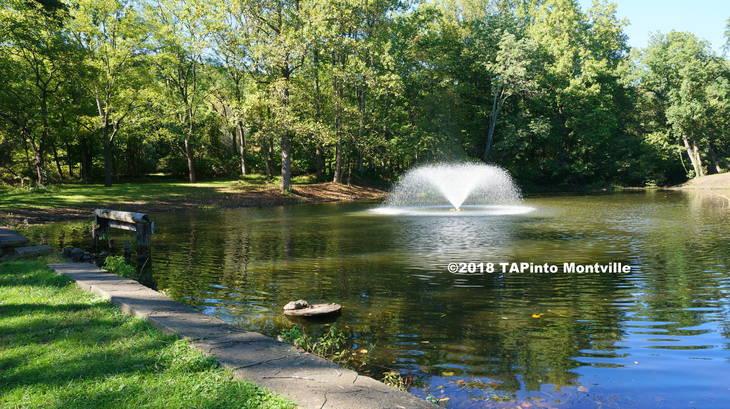 39323f07d12ed7f7f9c6_a____The_Camp_Dawson_pond__2018_TAPinto_Montville_____1..JPG