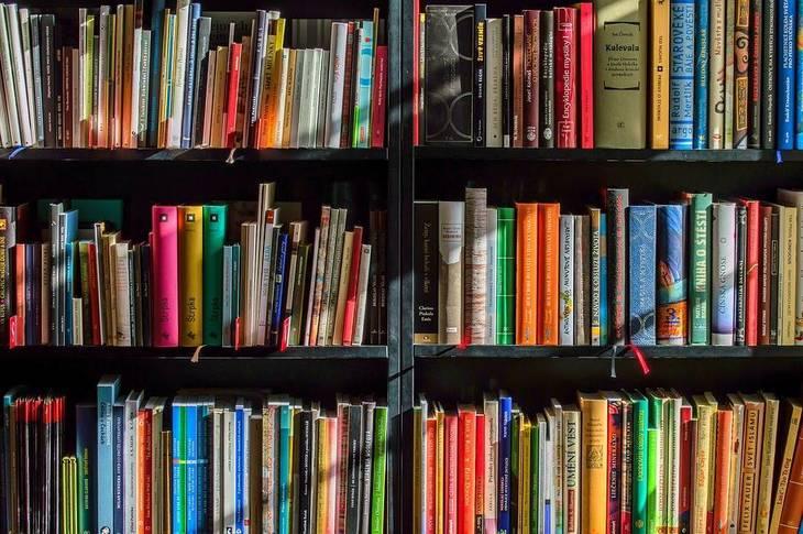 393ca00f8a3f49ebc958_books2.jpg