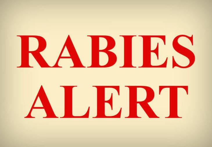 413b32fe724a624229af_Rabies_Alert.jpg