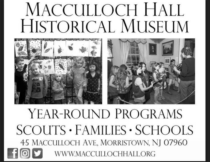 Macculloch Hall Museum