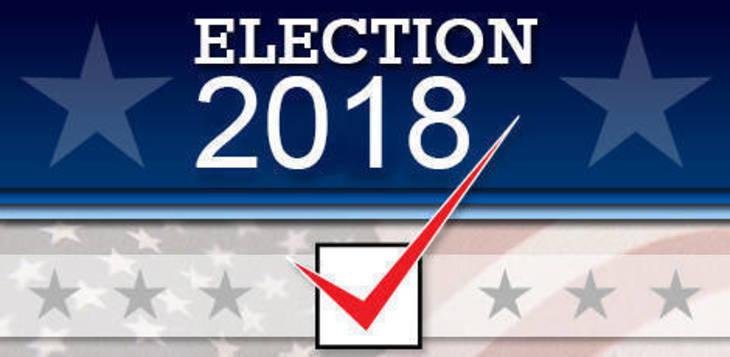 45c63053213c0db9b7e8_Election_2018_stock.jpg