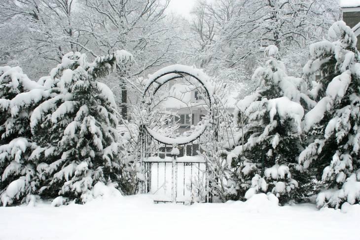 481c751bef4cb864c981_Snowday_149.jpg
