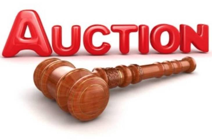 4a23266a3c01bae54e4d_e91768bbc2408d344657_auction.jpg