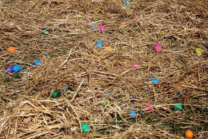 4a3d16da4c0b8c350f98_Easter_Egg_Hunt_Bloomfield_Skyline_Church___035.jpg