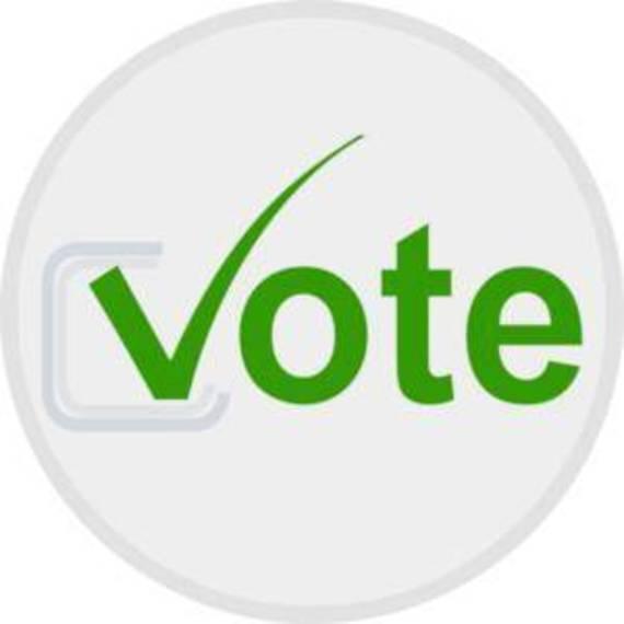 4b42fb9a253db748aa14_vote-button-md.jpg