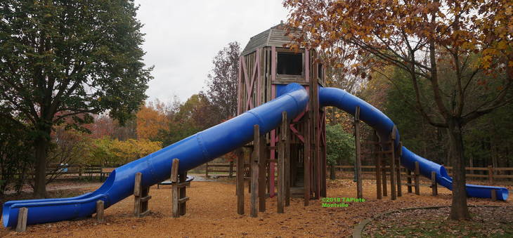 4f4a16fd2c6afe2cd327_Current_Montville_Twp_Community_Playground_silo_with_only_slides__2018_TAPinto_Montville.JPG