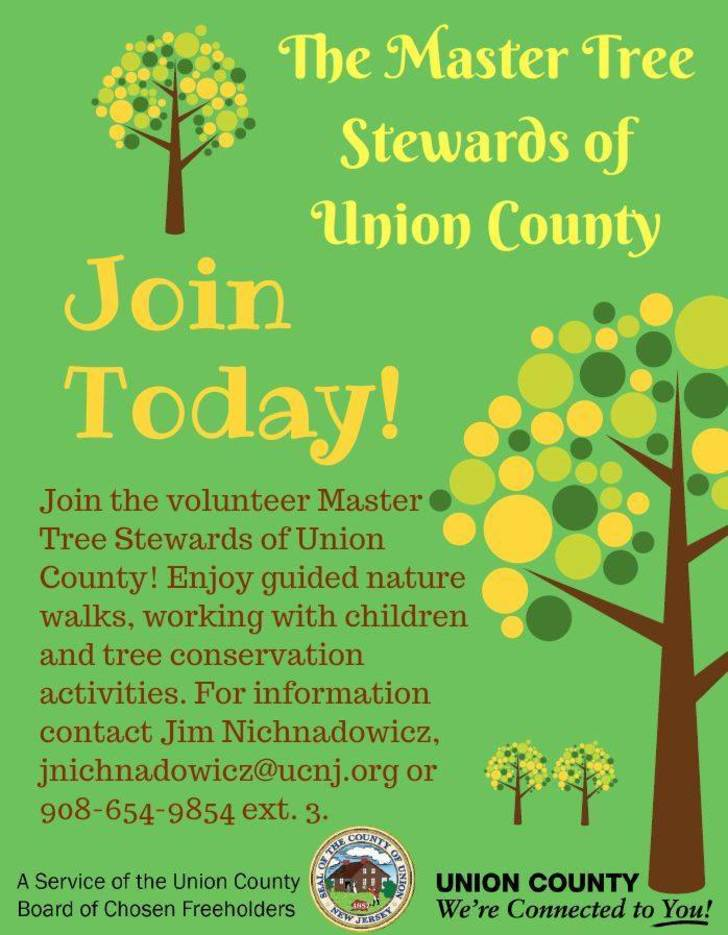 50237a137fa796381958_Master_Tree_Stewards_Flyer__jpeg_.JPG