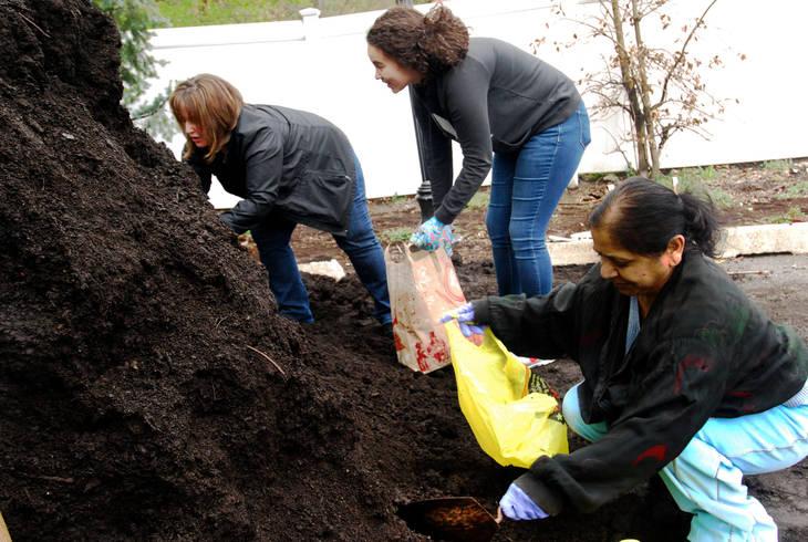 50636d6b9ded46a8b3a0_Compost2.jpg