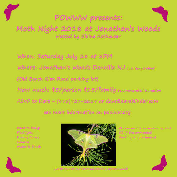 5259b48554351d5e95ff_POWWW_Moth_Night_2018_Flier.jpg