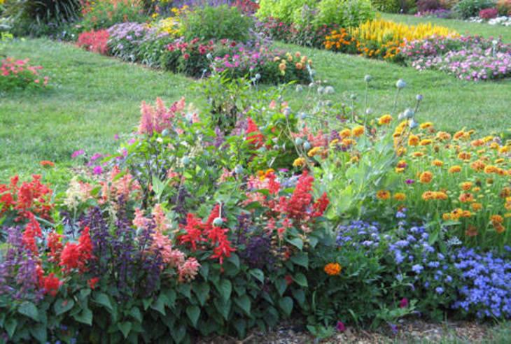 54dca4678b2c55f9683c_Plainfield_-_AIC_-_Harmonious_Gardening_photo_-_displaygarden.jpg