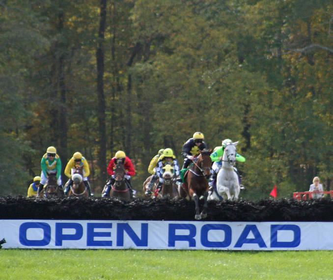 563222547af496800fd4_Far_Hills_Races_Undercardl238.JPG