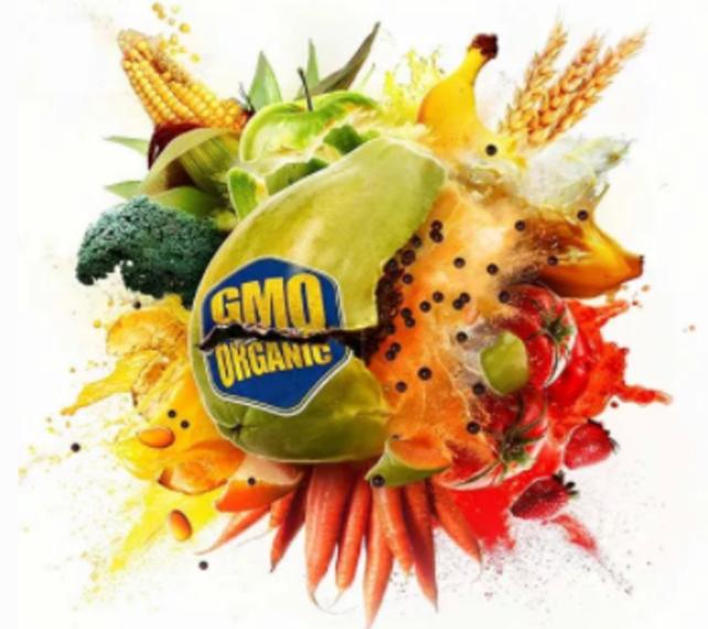 57d3c092c31330c80ace_Food_Evolution_Graphic.PNG