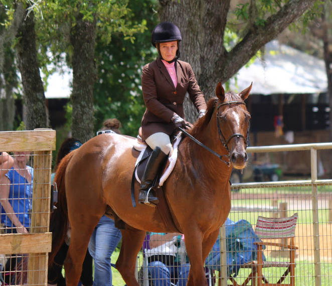 586e50141c2a52165a28_Janelles_Thoroughbred26.JPG