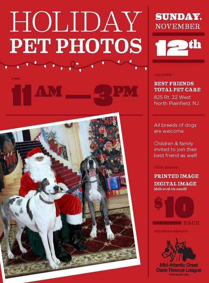 5bb316694843507a8478_MAGDRL_Holiday_Pet_Photos_2017color.jpg