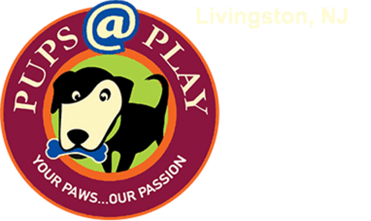 5e4b1cceaf1a0788c23c_pupsatplay-logo-header.jpg