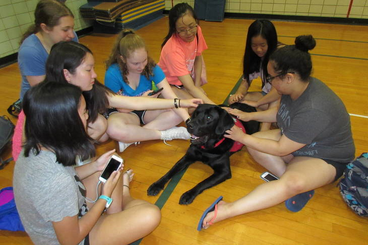 60009d76c851e59c0b75_Therapy_dog_at_WHS_exam_week.JPG