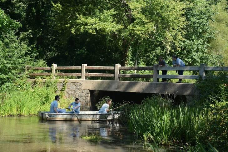 603c91b8bdc3e88be376_AAP_Floating_Wetlands__bridge_.JPG
