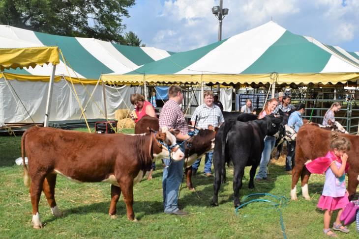 Somerset County 4H Fair Celebrates 70th Anniversary Aug. 9-11