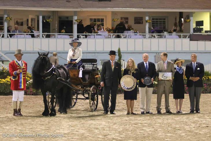 6604896cbfeb009a1be5_Devon_Horse_Show_Driving1.JPG
