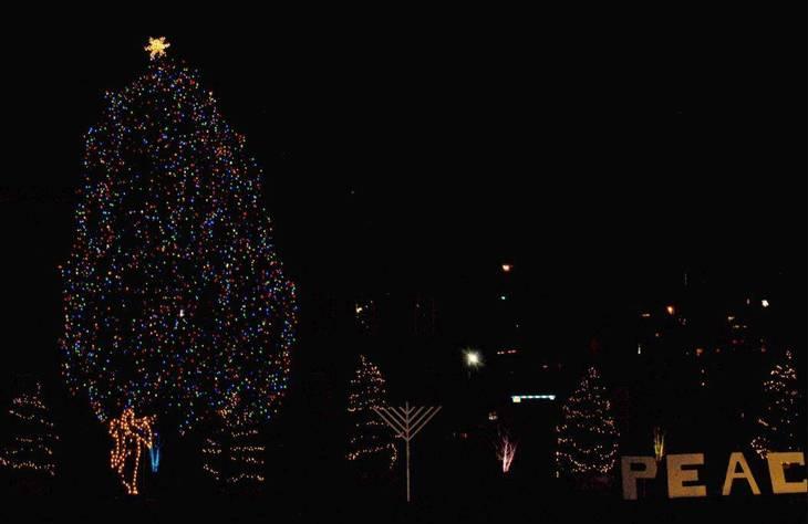 6608f5328711949c20ae_Christmas_Tree_Nutley_2016_a.JPG