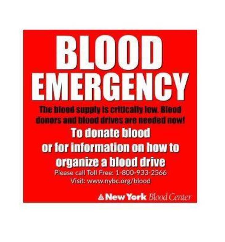 67ca46c46b43c4c65add_blood2.JPG