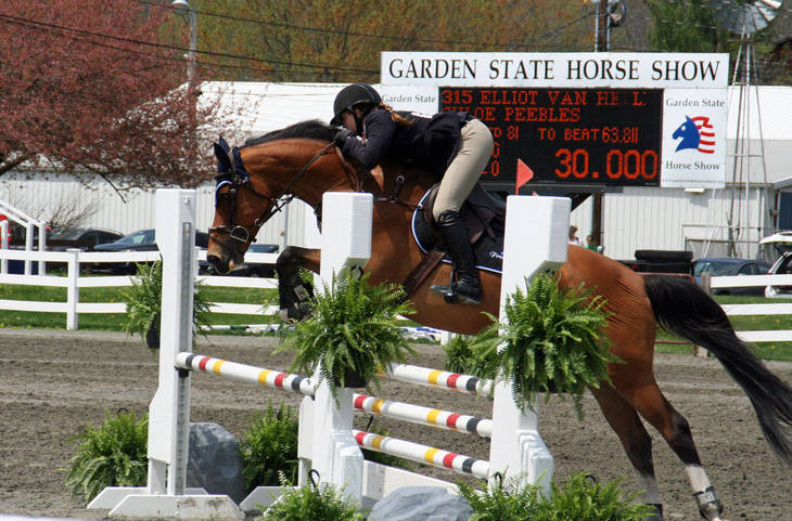 692dacb9a2044bb17547_Garden_Stat94e_Horse_Show_18_By_Lillian_Shupe.JPG