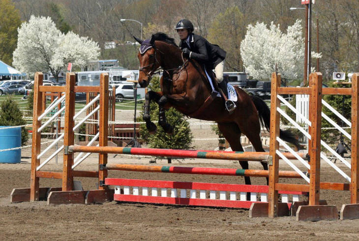 6d758ad2eb3db9492f44_Garden_State_Horse_Show.jpg