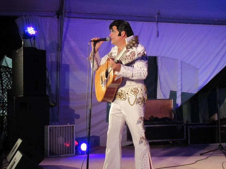 6e7a19b4fa1fb1ca805d_Elvis_2015_Fair.JPG