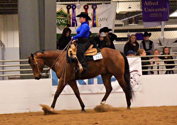 Collegiate Equestrian Alfred U Succeeds In The Ring