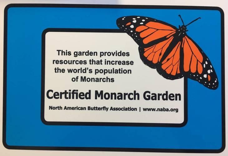 7082b035f644f188f66f_Butterfly_Garden_c.jpg