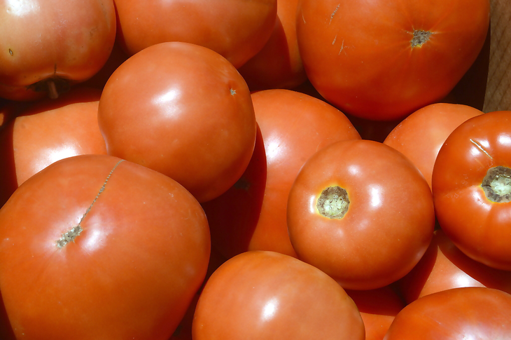 743fcc9a79b9f315e818_Farmers_Market_-_Tomatoes.jpg