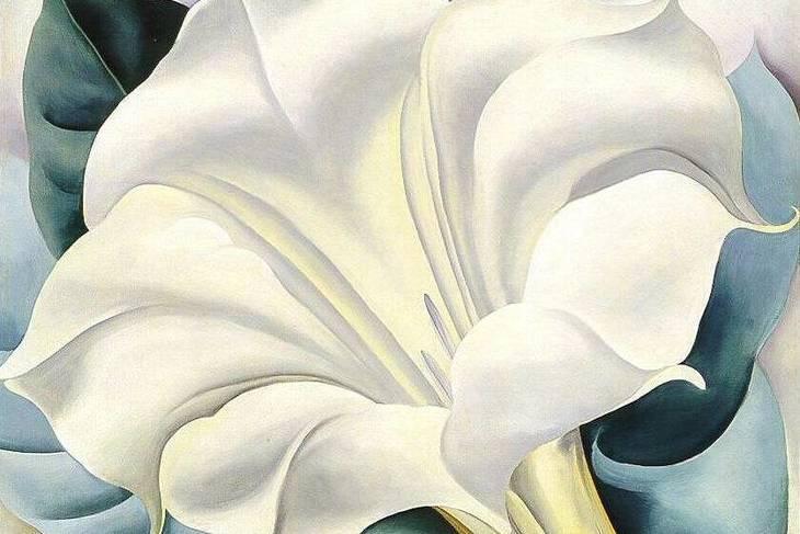 77d53082fd9fdb2a6f3a_ce0da6fdb676a1db9832_the-white-flower.jpg