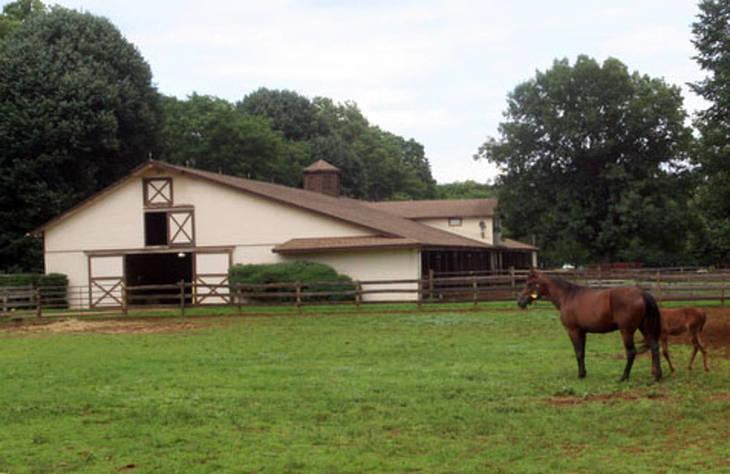 N.J. Ag Secretary Kicks Off Month Of The Horse at Fair Winds Farm