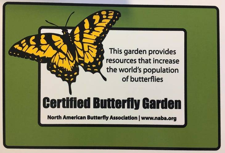 7e59d710cf5388ba1aa9_Butterfly_Garden_e.jpg
