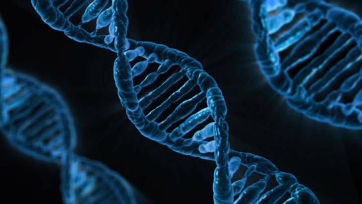 7ec8663db622f71715ed_DNA.jpg
