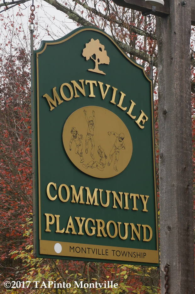 83462259d978af00dc57_a_Montville_Township_Community_Playground__2017_TAPinto_Montville.JPG