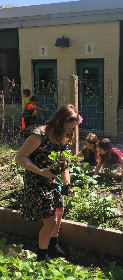 Milltown's Parkview School's Green Club Makes A Difference