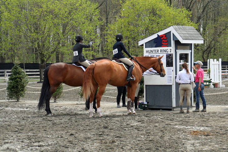 88c928ecd5bd0046175f_Garden_Stat80e_Horse_Show_18_By_Lillian_Shupe.JPG