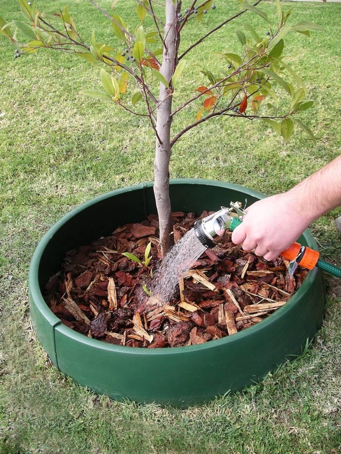89dfce4093afaacae541_Tree_Watering_GreenWell_Water_Saver_2017.jpg