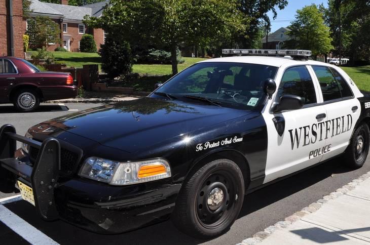 8c44afbaf58510ab0661_7c24dbd90f0db0dc069e_police_car.JPG