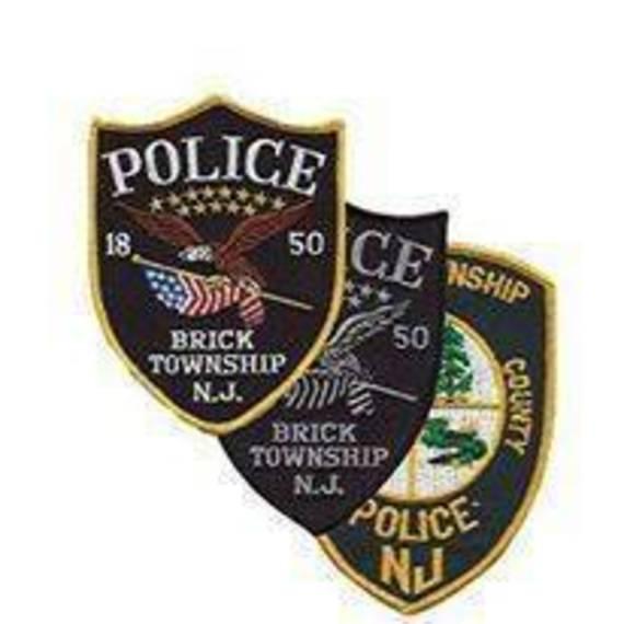 9026c5d04262dd7fce09_brick_police.jpg
