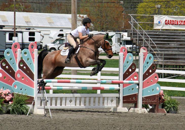 92b9d3c3d3b5b8262dfc_Garden_Stat105e_Horse_Show_18_By_Lillian_Shupe.JPG
