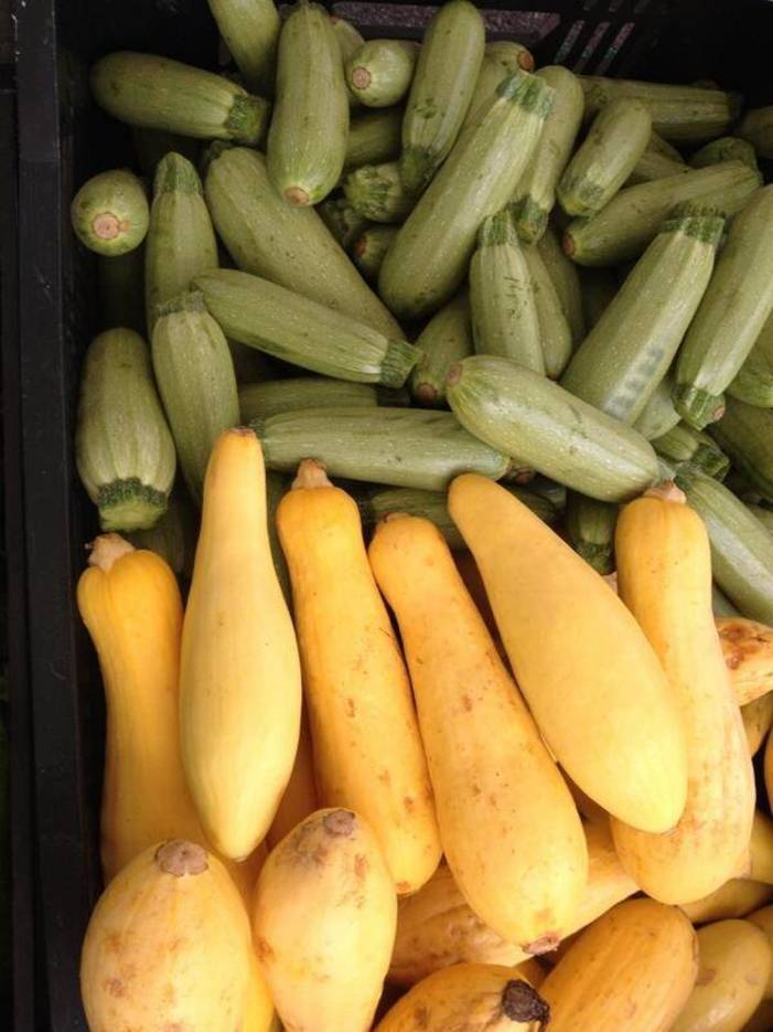946784ee8c9bac3c4fbb_MFM_Courgette_and_Squash.jpg