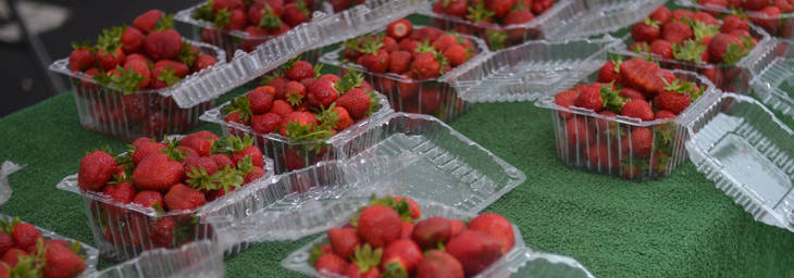 951241513a92d8949bb2_alstede_s_strawberries.jpg
