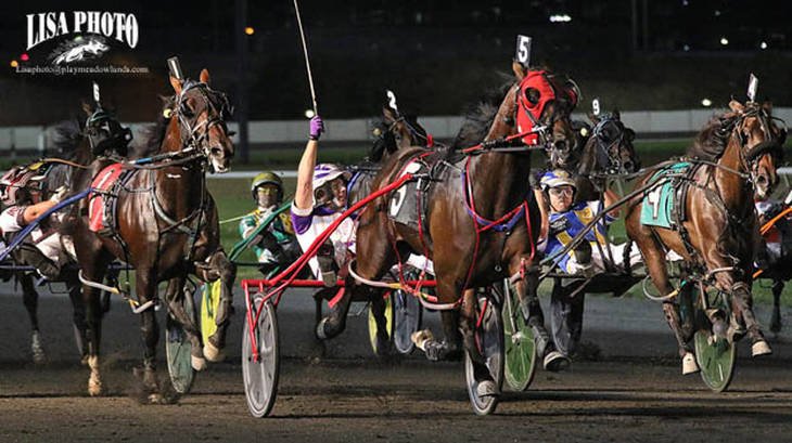 965f8e178600634e66a9_Meadowlands_Pace_Courtly_Choice.JPG