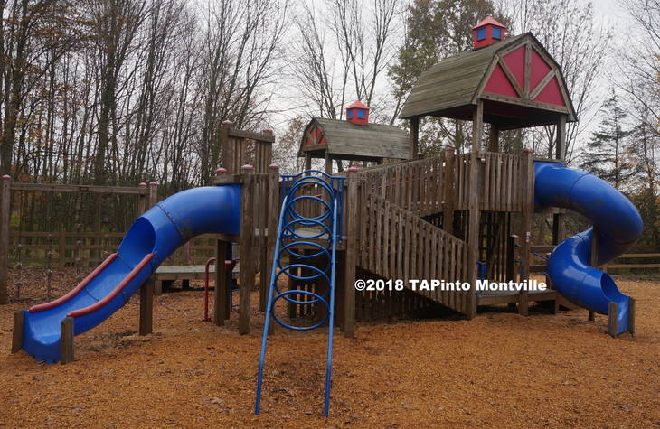 a0225c8588a8b434c02a_a_The_Community_Park_Playground__2018_TAPinto_Montville.JPG