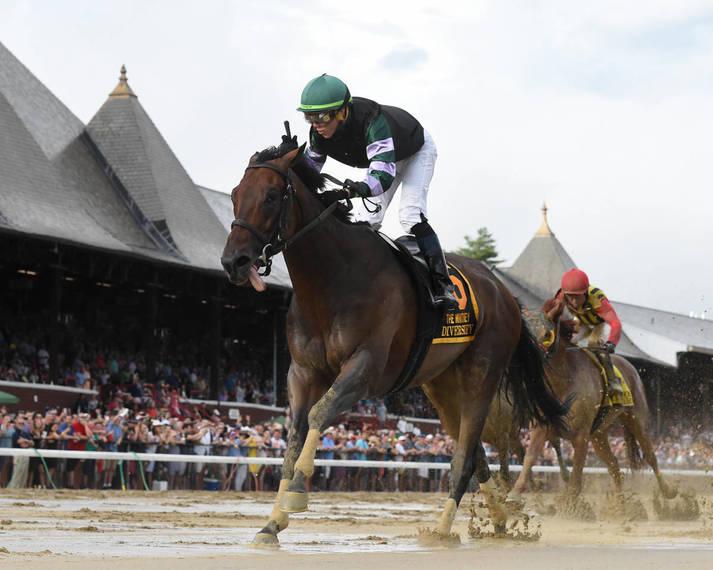 a1116af986d90ed1d59d_New_Vocations_horses100.JPG