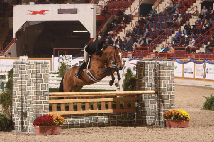 a4b57fa75ddd7baefe98_Penn_National_Horse_Show_2017294.JPG